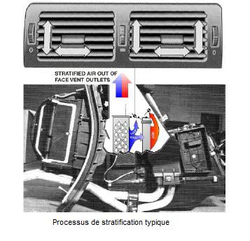 Processus-de-stratification-typique.png