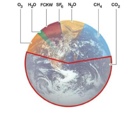 Systemes-de-controle-des-emissions-diesel.png