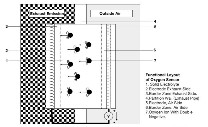 disposition-fonctionnelle-du-capteur-d-oxygene.png