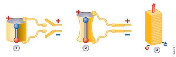 principe de fonctionnement e l'injecteur piézo-électrique